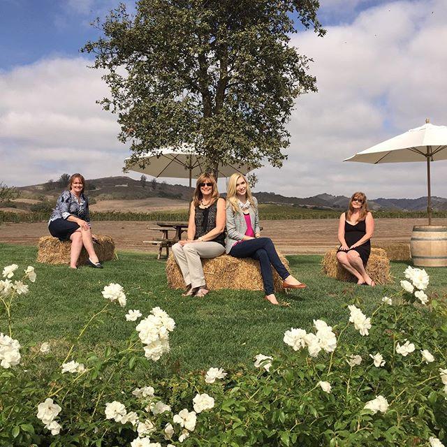 sitting in vineyard